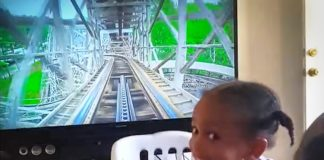Rollercoaster fun on viral video