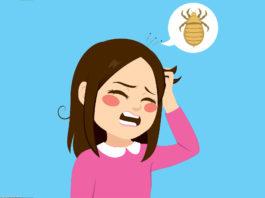 get rid of head lice