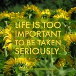 LIFE IS TOO IMPORTANT