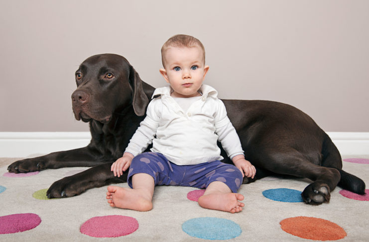 Should You Train Your Baby Like A Dog?